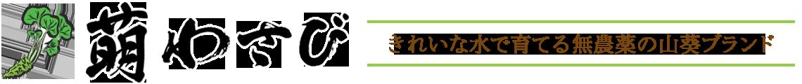 萌わさび|きれいな水で育てる無農薬の山葵ブランド|熊本